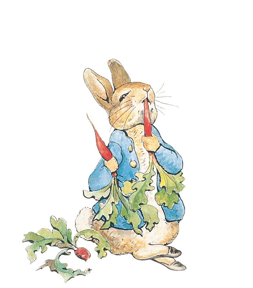the tale of peter rabbit The tale of peter rabbit is a british children's book written and illustrated by beatrix potter that follows mischievous and disobedient young peter rabbit.